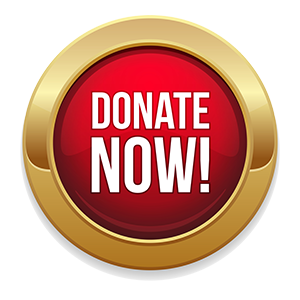 donate_now small web